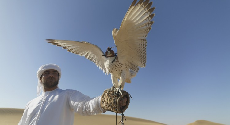 Falcon Hospital UAE PayPerKay UAE tourist destination Hire Rent Lease a car Abu Dhabi Dubai Sharjah Al Ain